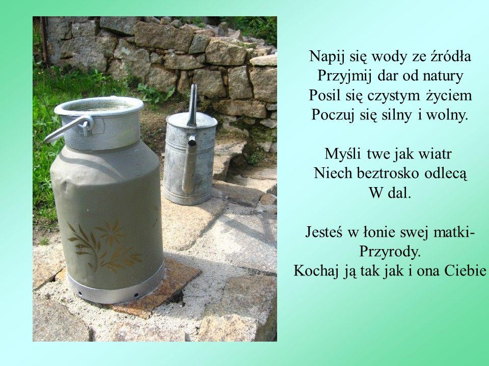 Napij się wody ze źródła Przyjmij dar od natury Posil się czystym życiem Poczuj się silny i wolny. Myśli twe jak wiatr Niech beztrosko odlecą W dal. J