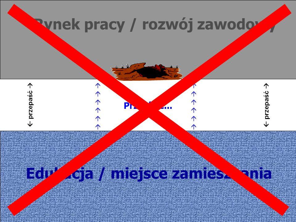 Rynek pracy / rozwój zawodowy Edukacja / miejsce zamieszkania przepaść Przejście...