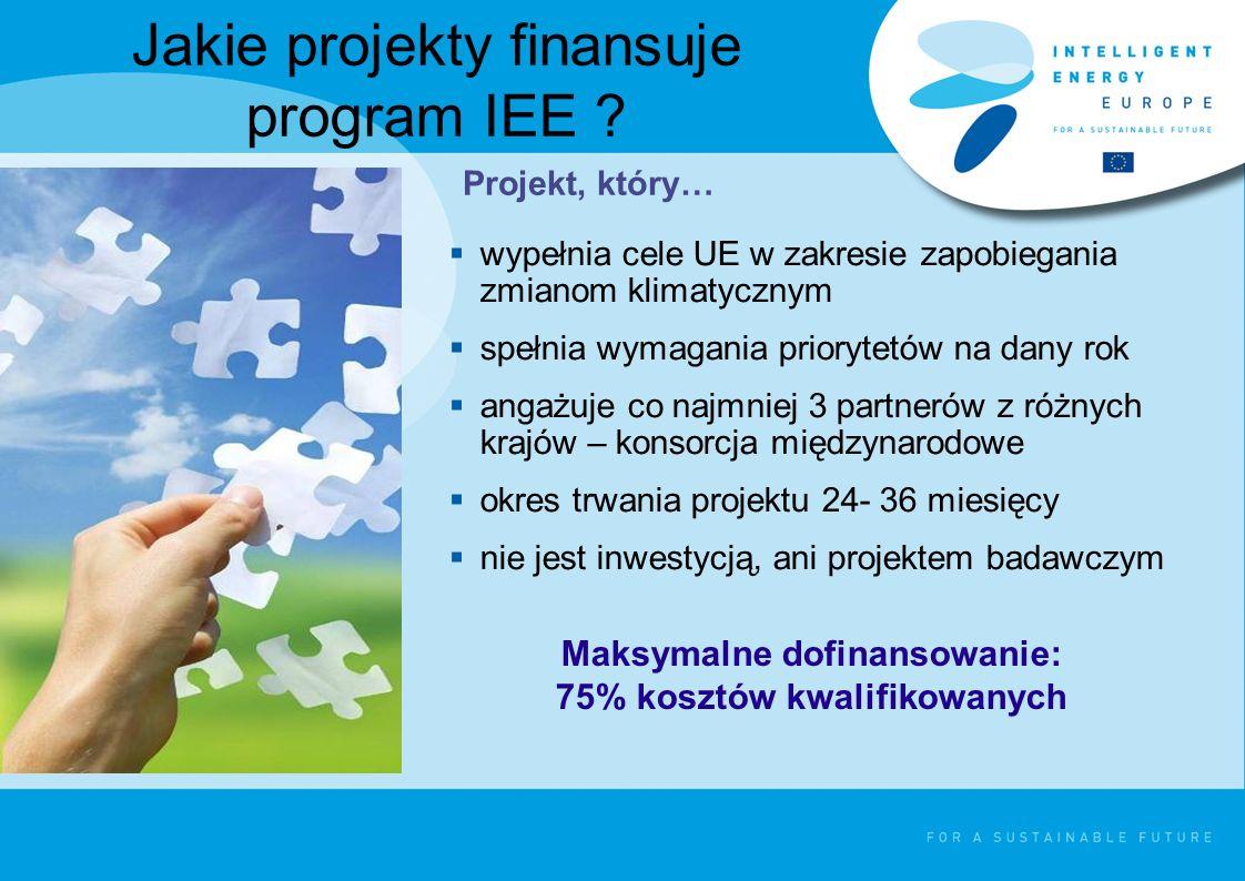 Jakie projekty finansuje program IEE .