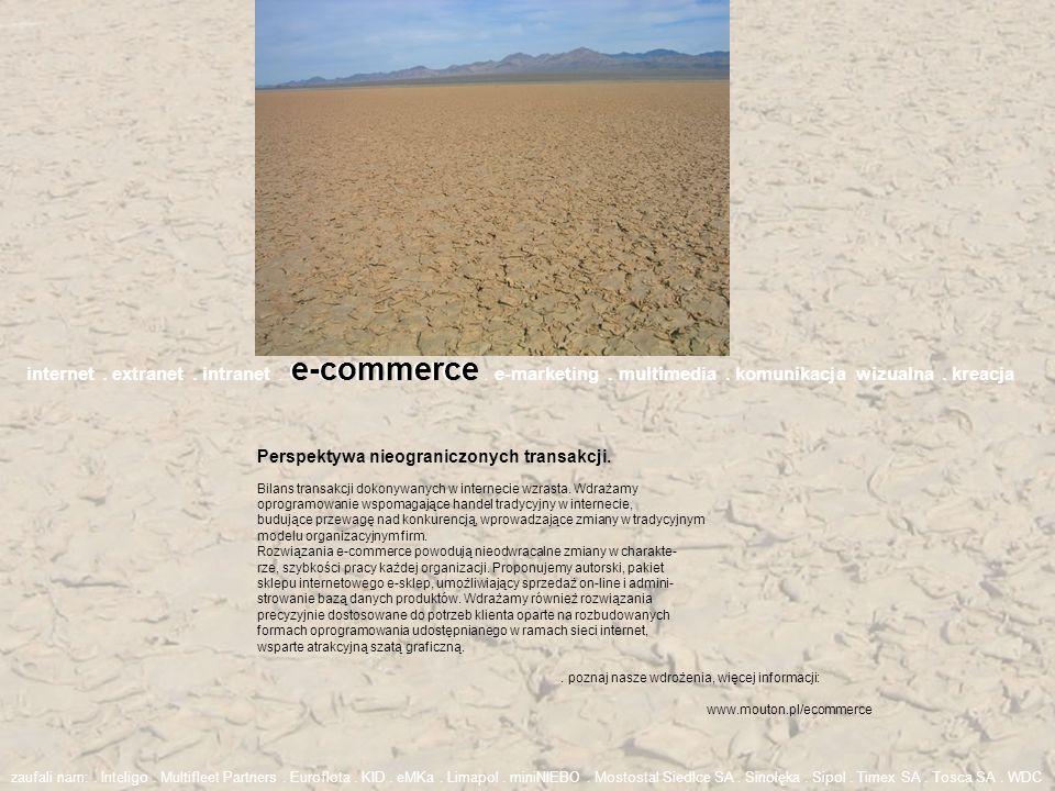 internet. extranet. intranet. e-commerce. e-marketing. multimedia. komunikacja wizualna. kreacja. poznaj nasze wdrożenia, więcej informacji: www.mouto