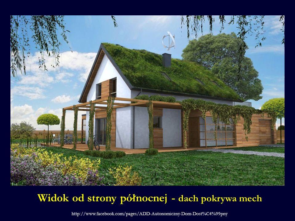 Widok od strony północnej - dach pokrywa mech http://www.facebook.com/pages/ADD-Autonomiczny-Dom-Dost%C4%99pny