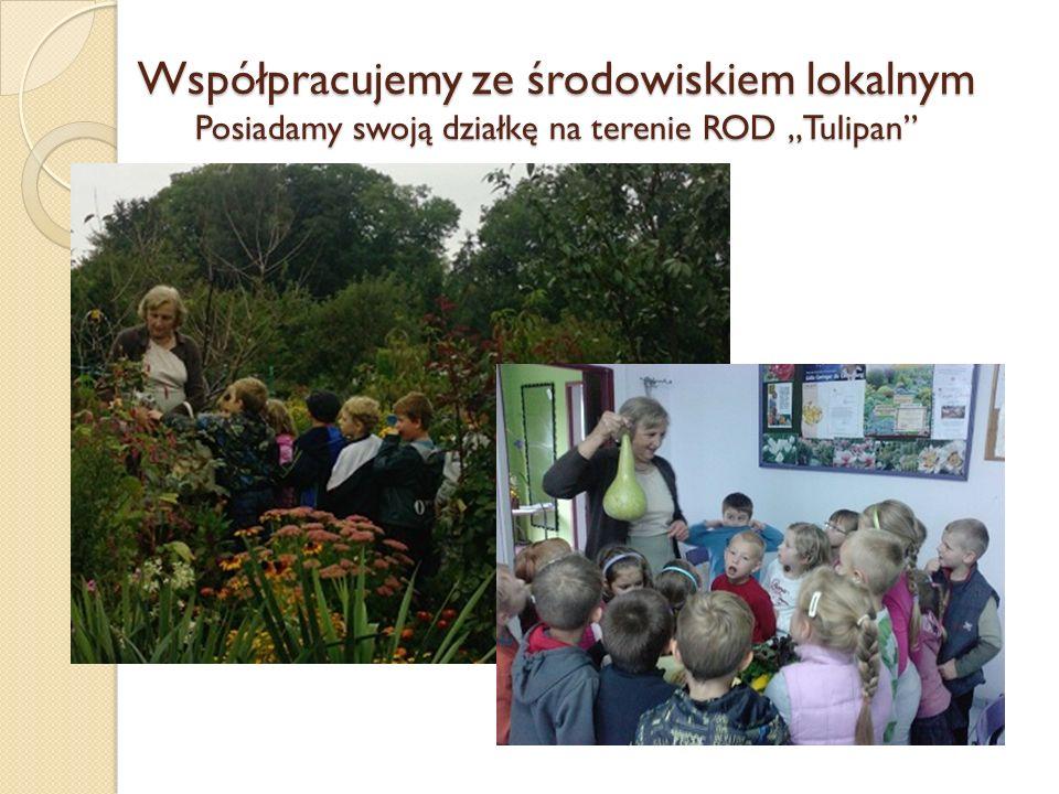Współpracujemy ze środowiskiem lokalnym Posiadamy swoją działkę na terenie ROD Tulipan