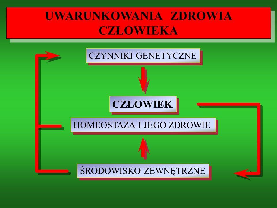 6.SPOŻYWAJ PRODUKTY ZAWIERAJĄCE BŁONNIK 7.