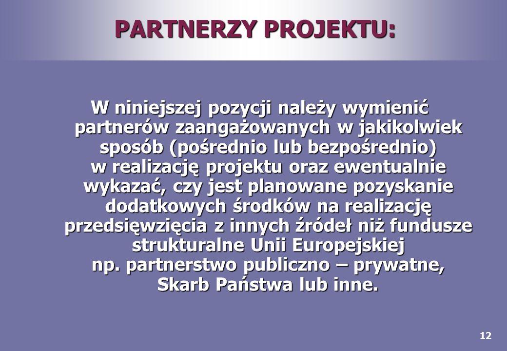 12 PARTNERZY PROJEKTU: W niniejszej pozycji należy wymienić partnerów zaangażowanych w jakikolwiek sposób (pośrednio lub bezpośrednio) w realizację pr