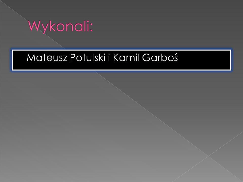 Mateusz Potulski i Kamil Garboś