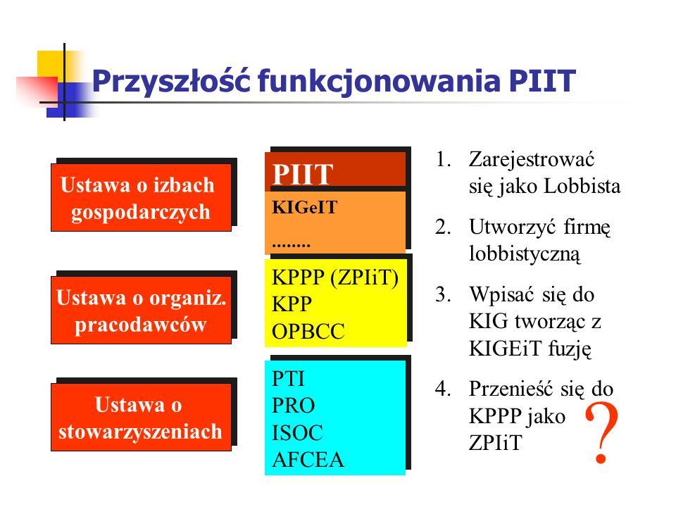 Przyszłość funkcjonowania PIIT Ustawa o izbach gospodarczych Ustawa o izbach gospodarczych Ustawa o organiz. pracodawców Ustawa o organiz. pracodawców