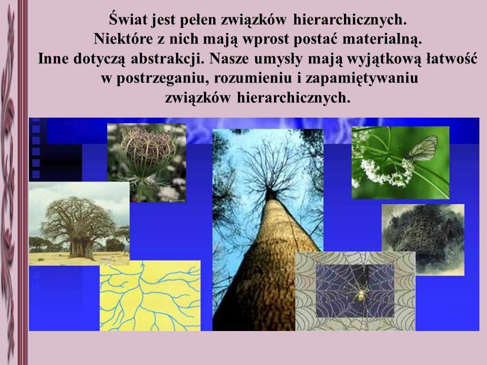 Świat jest pełen związków hierarchicznych. Niektóre z nich mają wprost postać materialną. Inne dotyczą abstrakcji. Nasze umysły mają wyjątkową łatwość