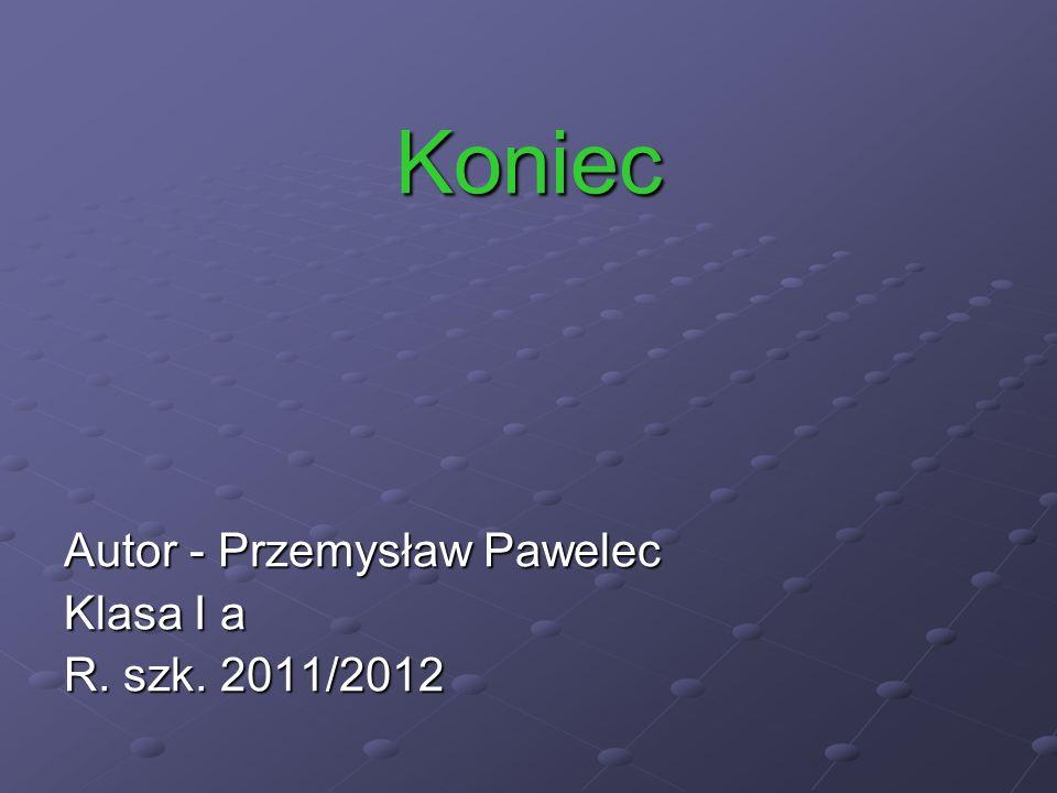 Koniec Autor - Przemysław Pawelec Klasa I a R. szk. 2011/2012