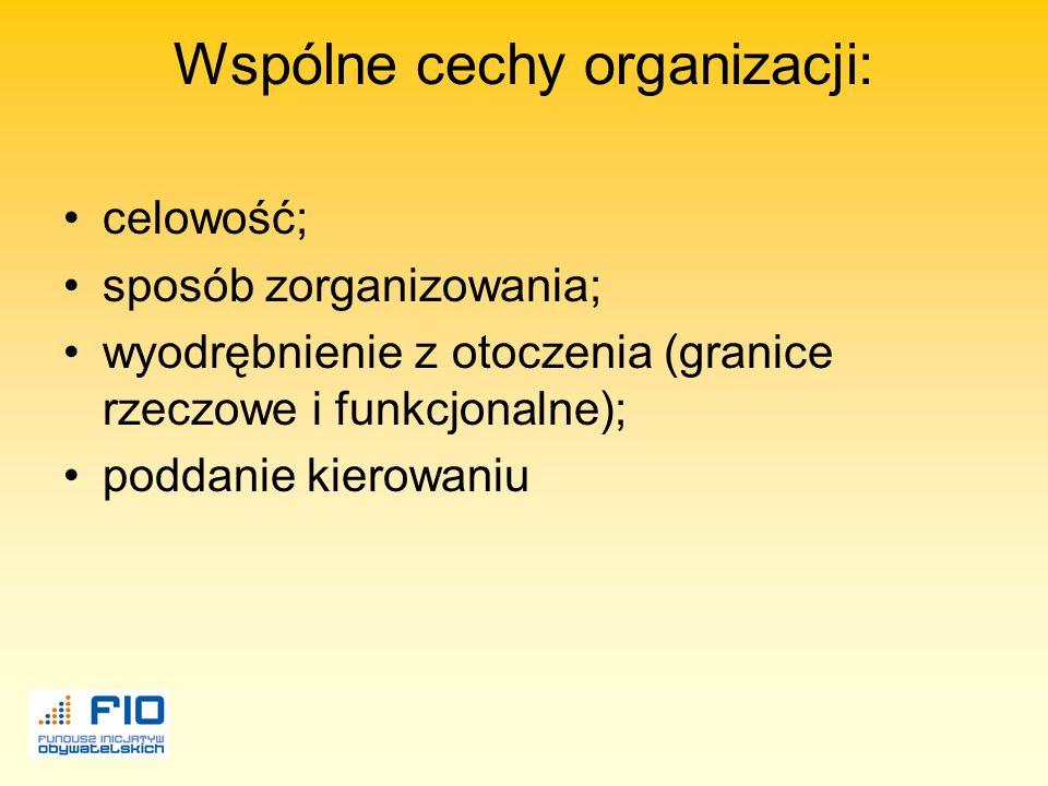 Organizacja-grupa ludzi którzy współpracują ze sobą w sposób uporządkowany i skoordynowany by osiągnąć pewien zestaw celów.