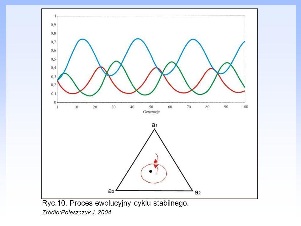 Ryc.10. Proces ewolucyjny cyklu stabilnego. Źródło:Poleszczuk J. 2004