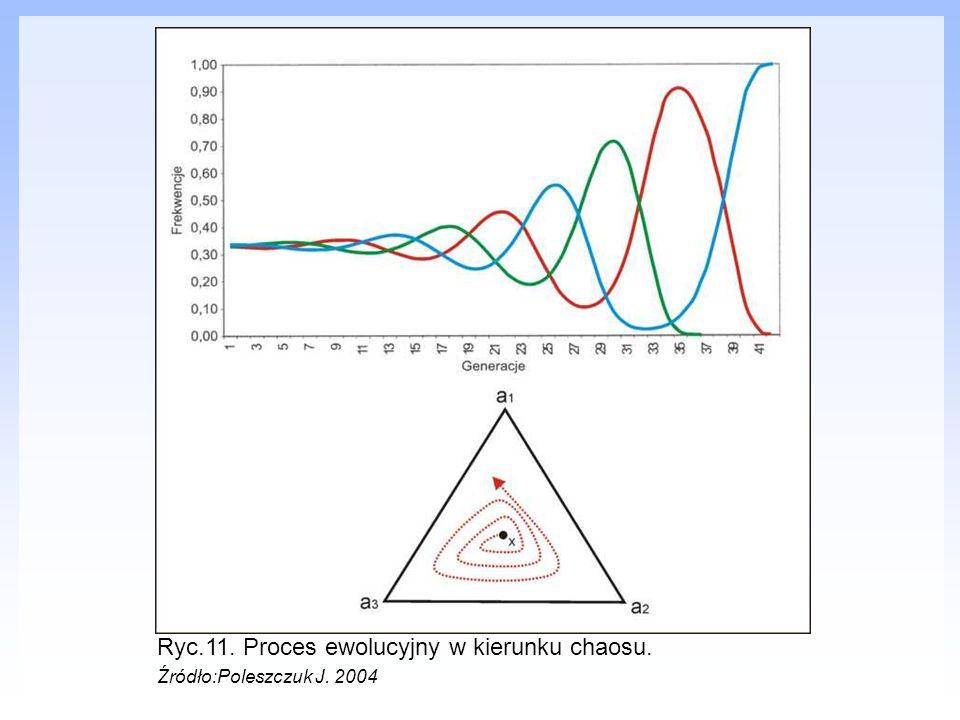 Ryc.11. Proces ewolucyjny w kierunku chaosu. Źródło:Poleszczuk J. 2004