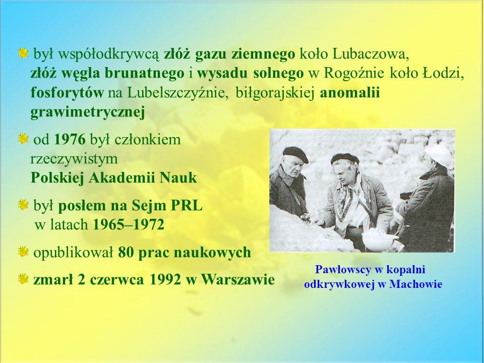 był współodkrywcą złóż gazu ziemnego koło Lubaczowa, złóż węgla brunatnego i wysadu solnego w Rogoźnie koło Łodzi, fosforytów na Lubelszczyźnie, biłgo