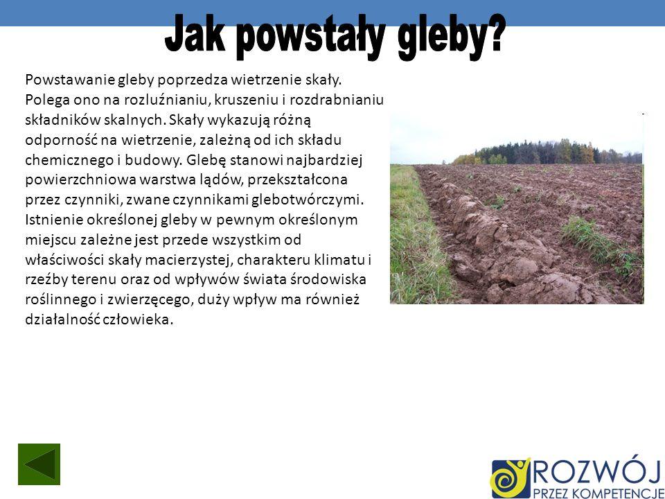 Powstawanie gleby poprzedza wietrzenie skały. Polega ono na rozluźnianiu, kruszeniu i rozdrabnianiu składników skalnych. Skały wykazują różną odpornoś