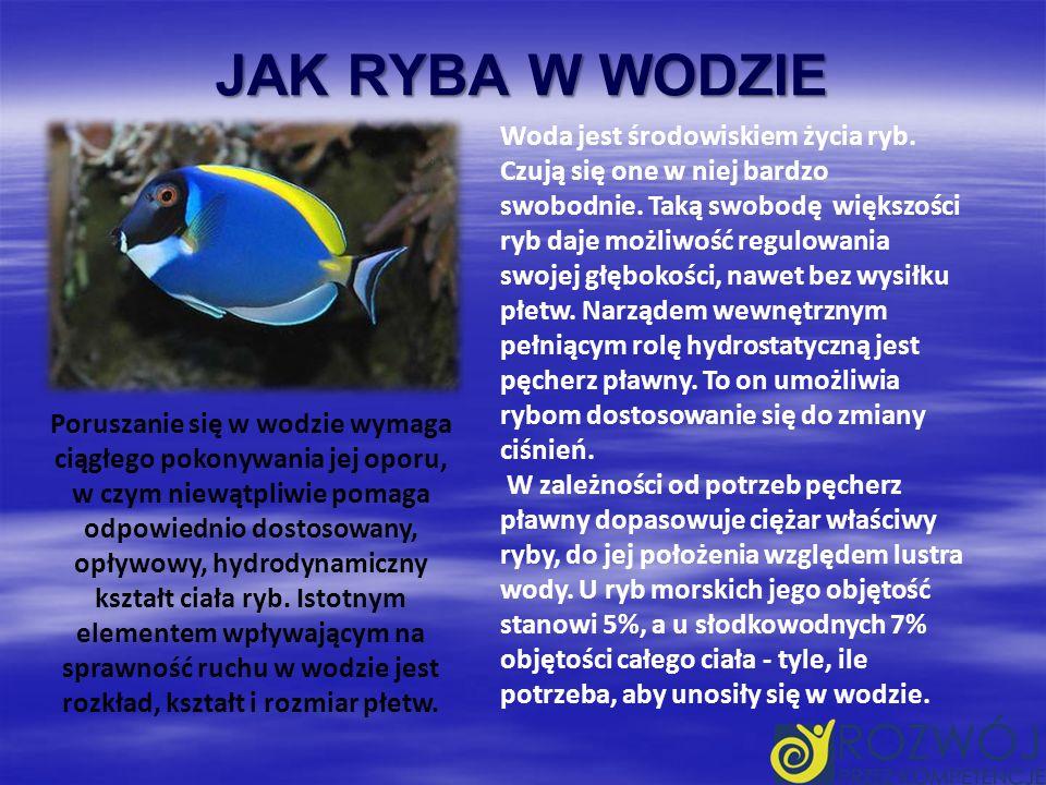 JAK RYBA W WODZIE Woda jest środowiskiem życia ryb.
