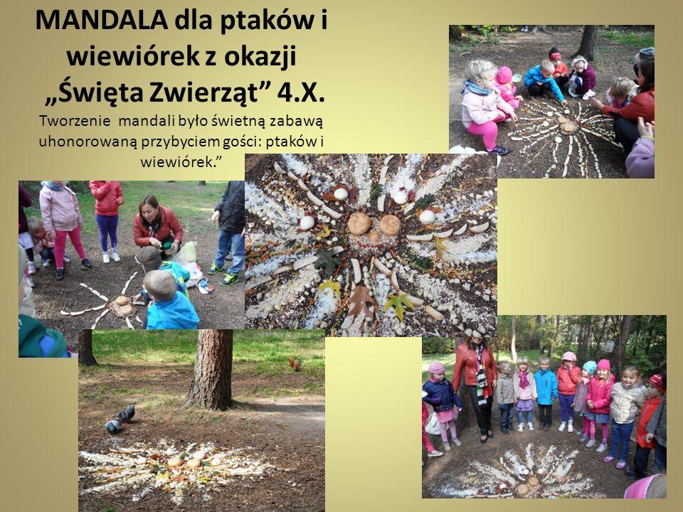 MANDALA dla ptaków i wiewiórek z okazji Święta Zwierząt 4.X. Tworzenie mandali było świetną zabawą uhonorowaną przybyciem gości: ptaków i wiewiórek.