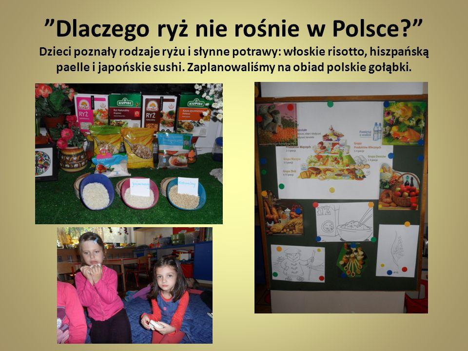 Dlaczego ryż nie rośnie w Polsce? Dzieci poznały rodzaje ryżu i słynne potrawy: włoskie risotto, hiszpańską paelle i japońskie sushi. Zaplanowaliśmy n
