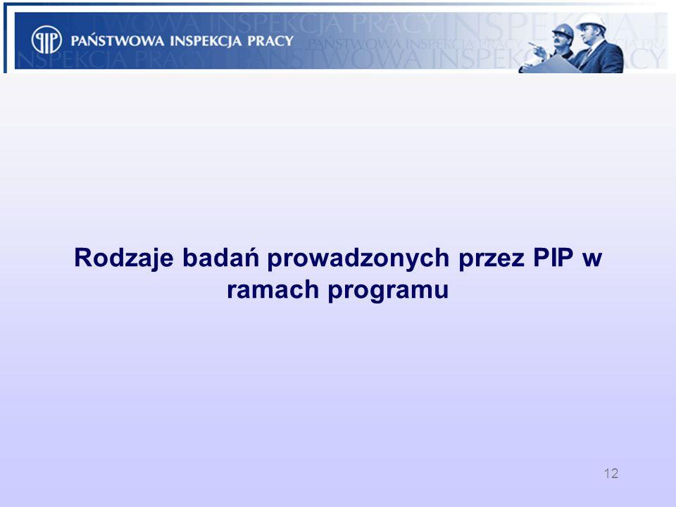 12 Rodzaje badań prowadzonych przez PIP w ramach programu