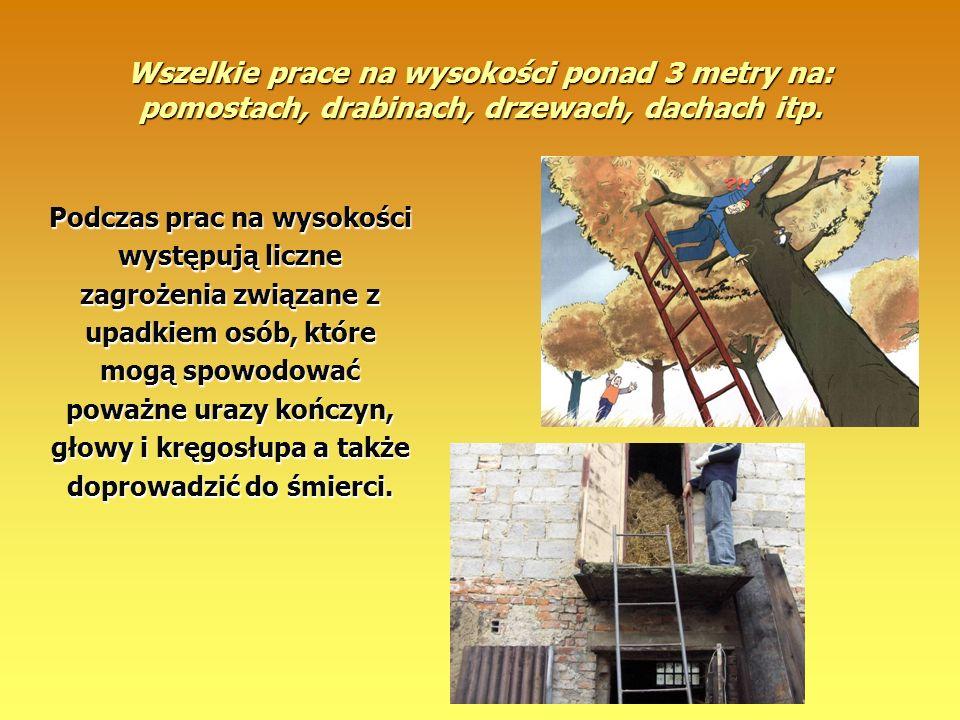 Wszelkie prace na wysokości ponad 3 metry na: pomostach, drabinach, drzewach, dachach itp. Podczas prac na wysokości występują liczne zagrożenia związ