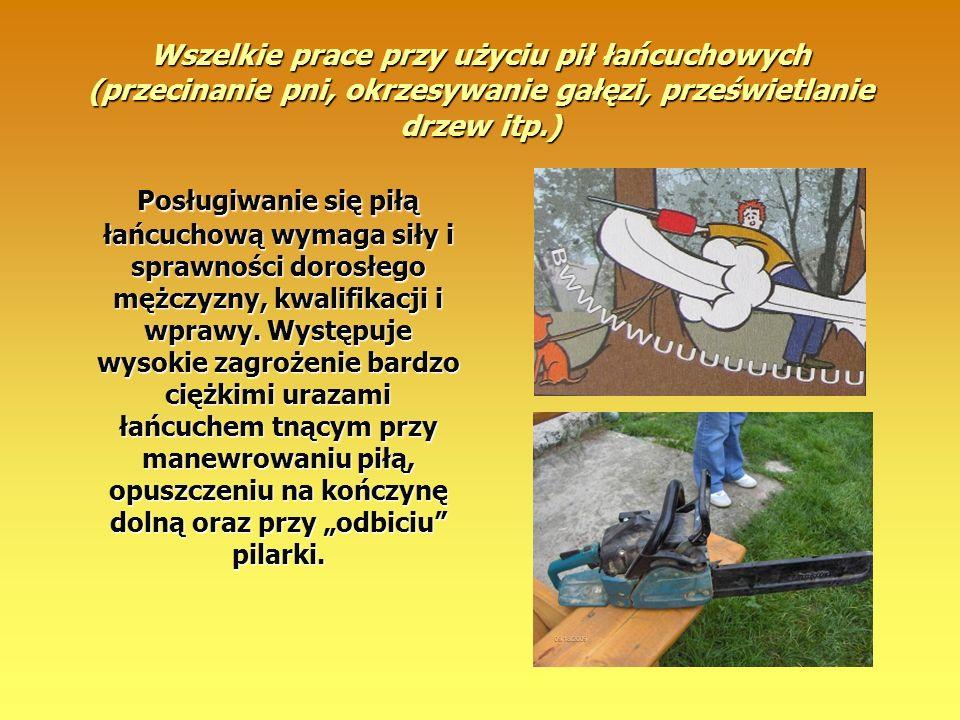 Wszelkie prace przy użyciu pił łańcuchowych (przecinanie pni, okrzesywanie gałęzi, prześwietlanie drzew itp.) Posługiwanie się piłą łańcuchową wymaga
