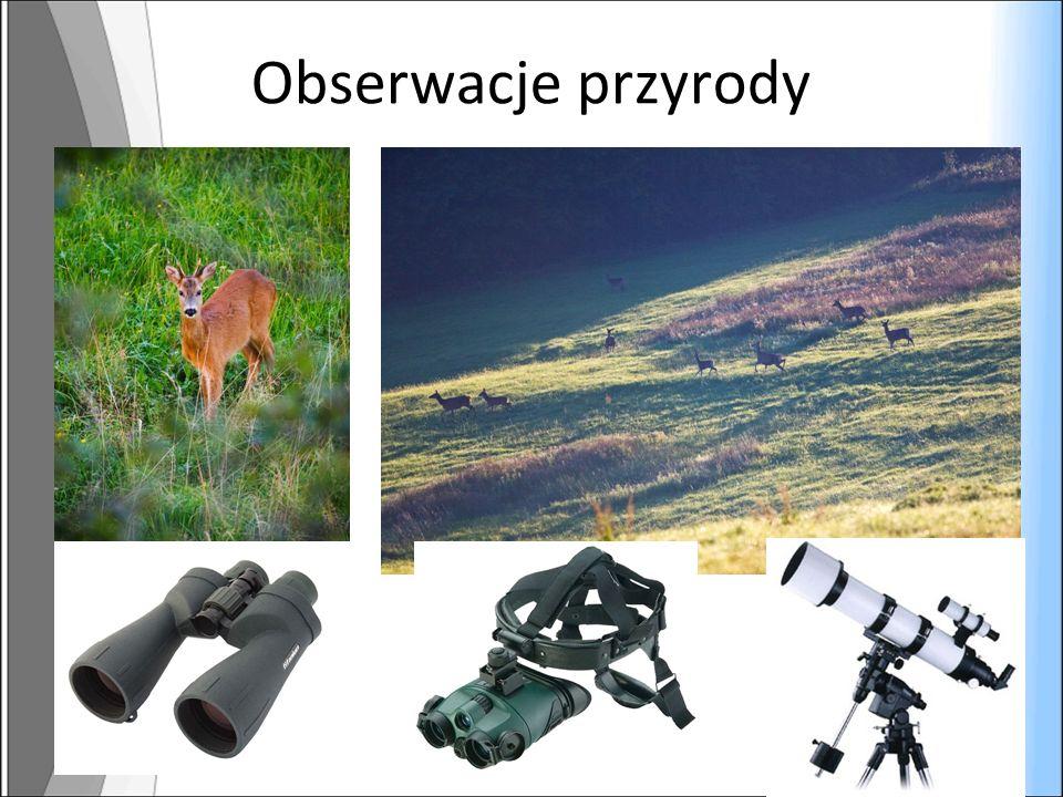 Obserwacje przyrody