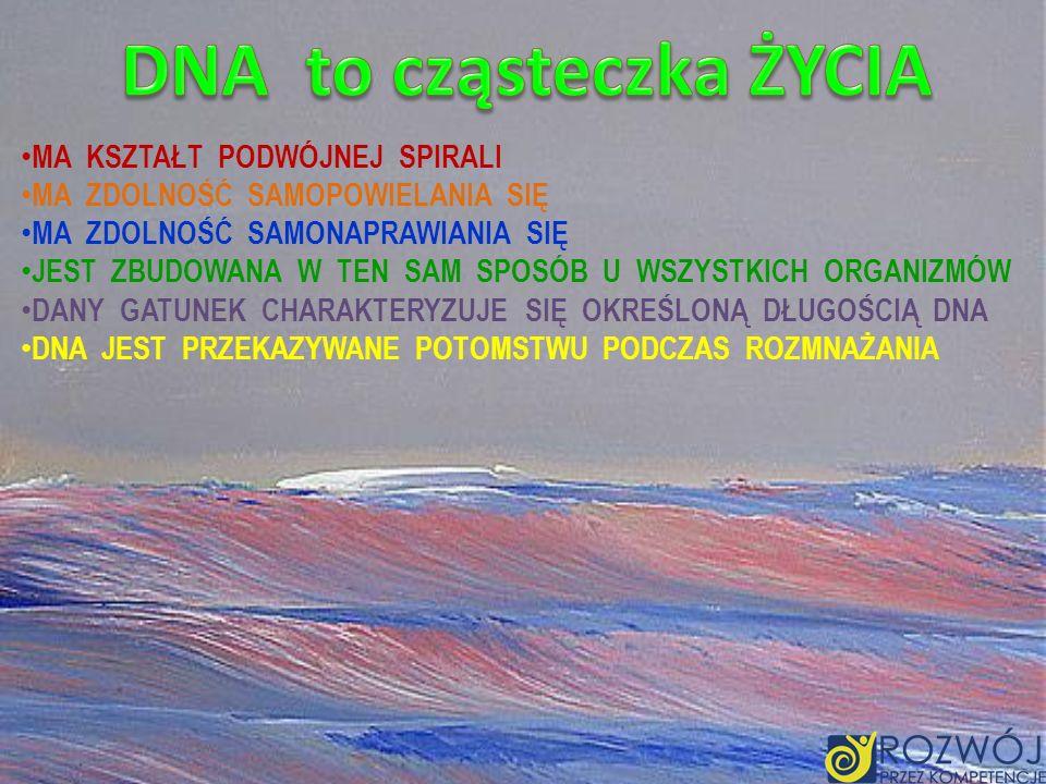 OZON O 3 TLEN ATMOSFERYCZNY O 2