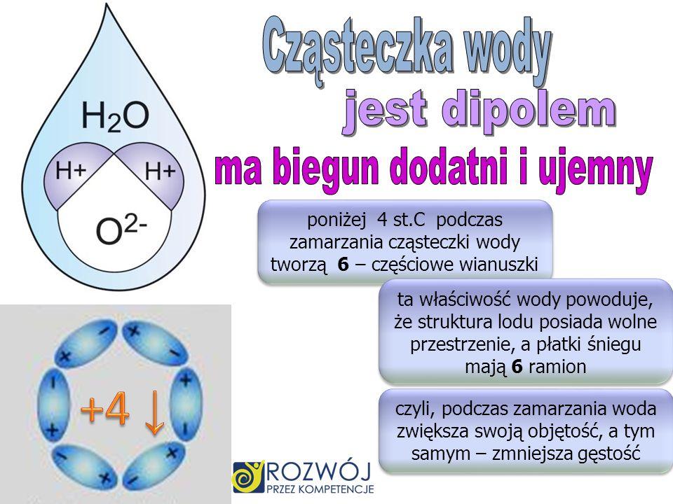 poniżej 4 st.C podczas zamarzania cząsteczki wody tworzą 6 – częściowe wianuszki ta właściwość wody powoduje, że struktura lodu posiada wolne przestrzenie, a płatki śniegu mają 6 ramion czyli, podczas zamarzania woda zwiększa swoją objętość, a tym samym – zmniejsza gęstość