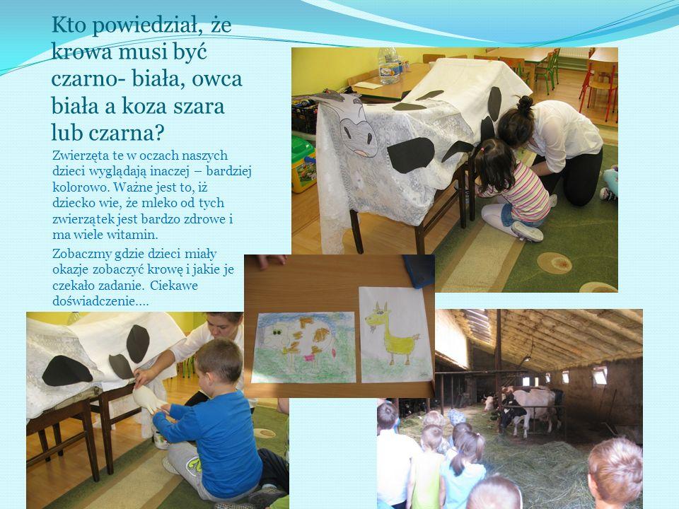 Kto powiedział, że krowa musi być czarno- biała, owca biała a koza szara lub czarna? Zwierzęta te w oczach naszych dzieci wyglądają inaczej – bardziej