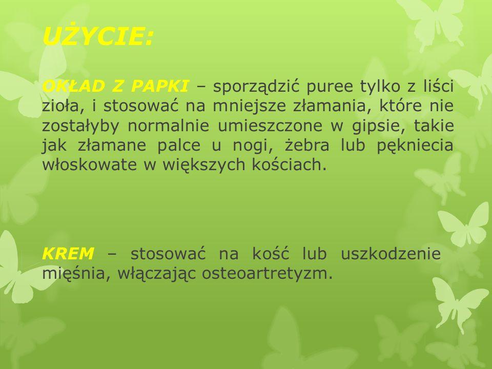 UŻYCIE: OKŁAD Z PAPKI – sporządzić puree tylko z liści zioła, i stosować na mniejsze złamania, które nie zostałyby normalnie umieszczone w gipsie, tak