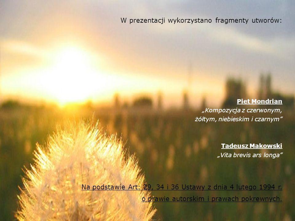 © SOnDiR copyright 2008 (LD&JK) Historia Andrzeja c.d.