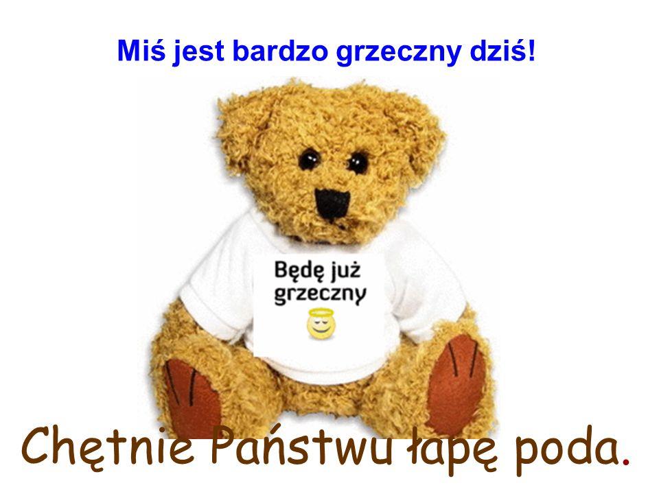 Miś, którego znają wszystkie dzieci w Polsce – mądry miś z klapniętym uszkiem, potrafi poradzić sobie w każdej trudnej sytuacji.