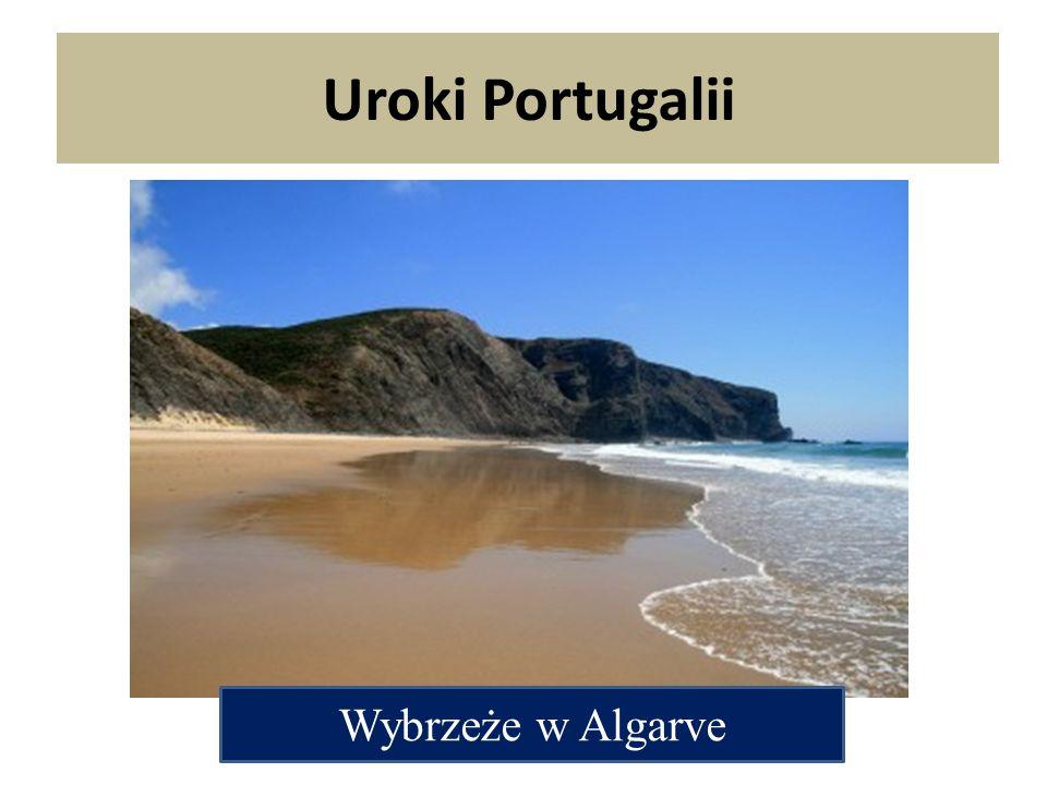 Wybrzeże w Algarve