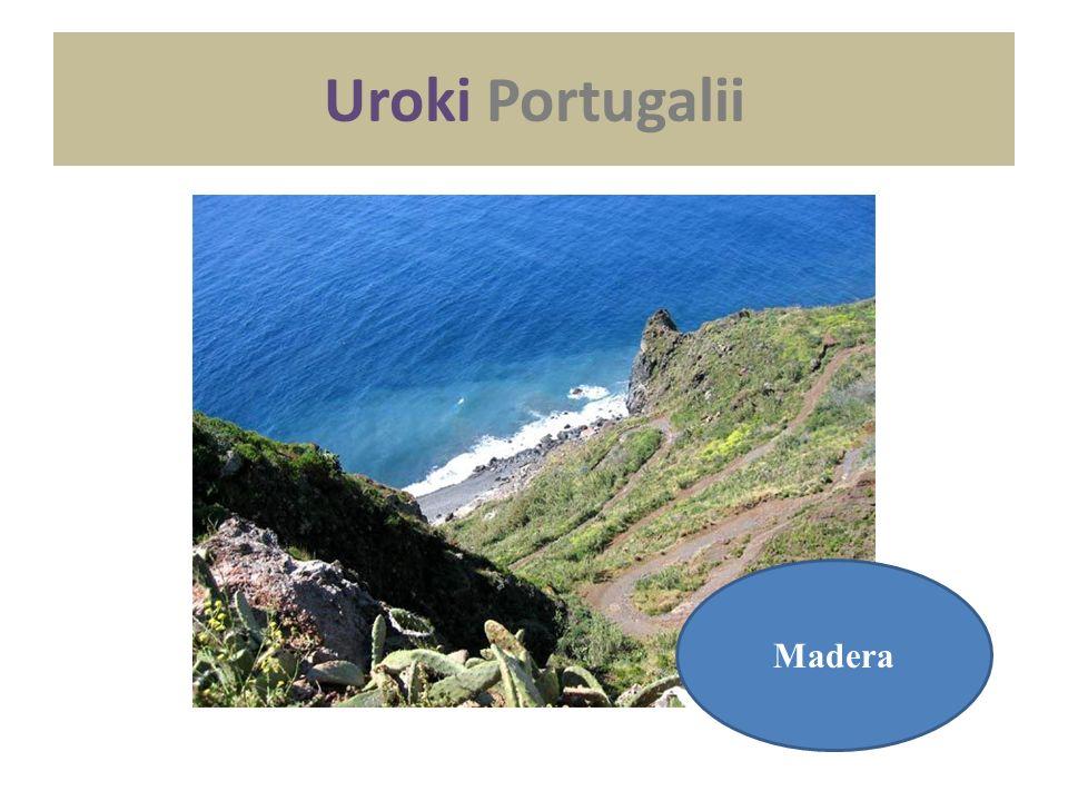 Uroki Portugalii Madera