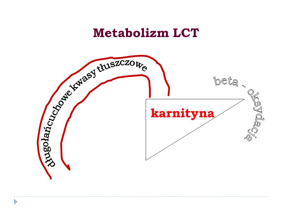 Metabolizm LCT karnityna