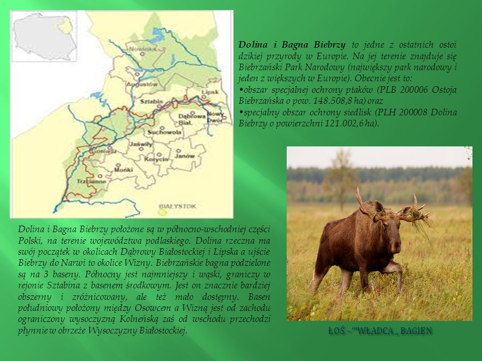 Dolina i Bagna Biebrzy to jedne z ostatnich ostoi dzikiej przyrody w Europie. Na jej terenie znajduje się Biebrzański Park Narodowy (największy park n