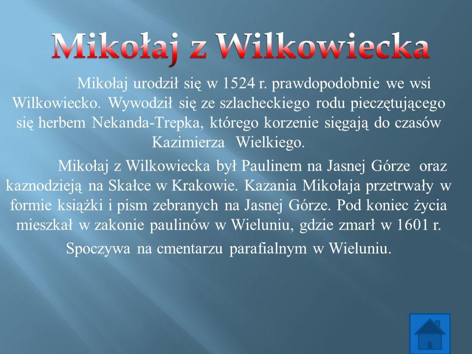 Mikołaj urodził się w 1524 r. prawdopodobnie we wsi Wilkowiecko. Wywodził się ze szlacheckiego rodu pieczętującego się herbem Nekanda-Trepka, którego