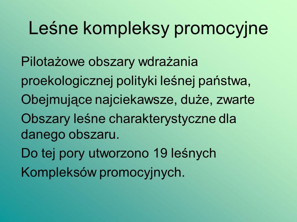 Formy ochrony przyrody w LP RodzajLiczbaPow.