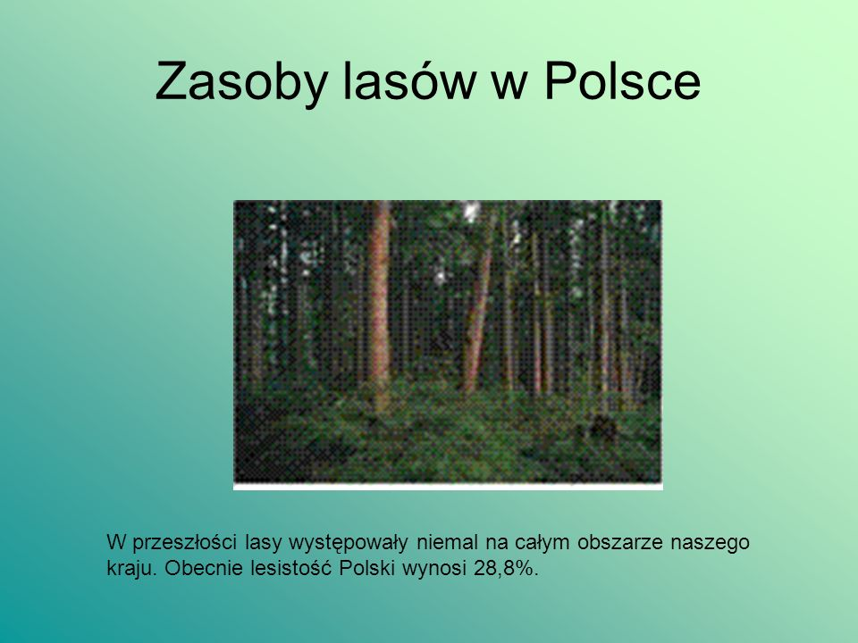 Zasoby lasów w Polsce W przeszłości lasy występowały niemal na całym obszarze naszego kraju. Obecnie lesistość Polski wynosi 28,8%.
