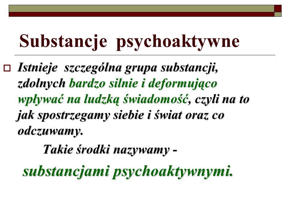 Narkomania, terapia…