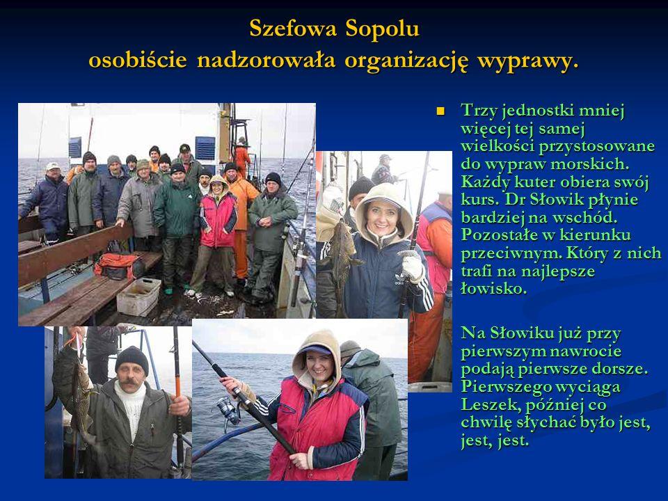 Szefowa Sopolu osobiście nadzorowała organizację wyprawy. Trzy jednostki mniej więcej tej samej wielkości przystosowane do wypraw morskich. Każdy kute