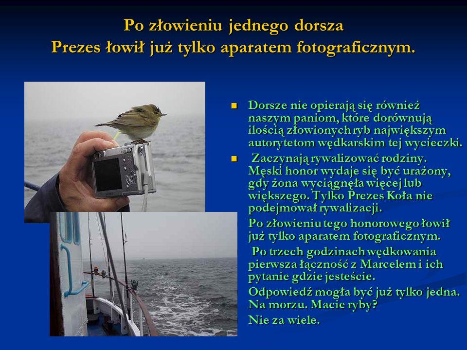 Po złowieniu jednego dorsza Prezes łowił już tylko aparatem fotograficznym. Dorsze nie opierają się również naszym paniom, które dorównują ilością zło