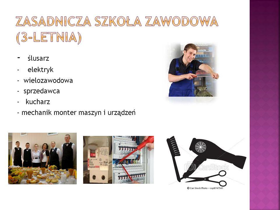 - ślusarz - elektryk - wielozawodowa - sprzedawca - kucharz - mechanik monter maszyn i urządzeń