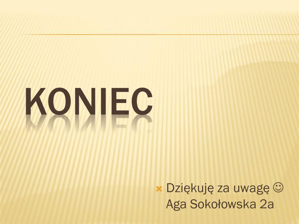 Dziękuję za uwagę Aga Sokołowska 2a