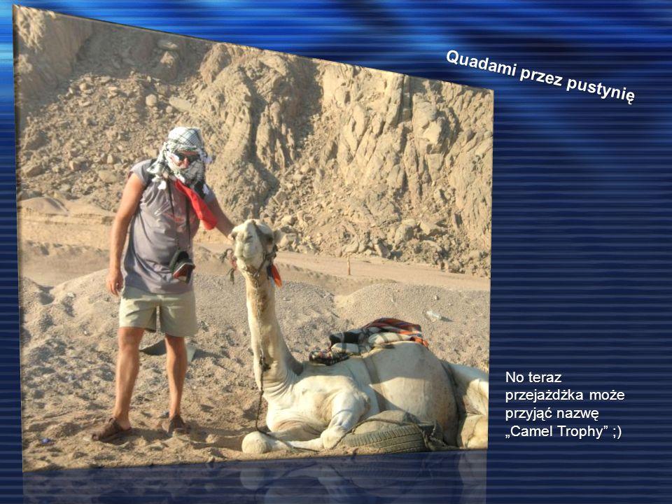 Quadami przez pustynię No teraz przejażdżka może przyjąć nazwę Camel Trophy ;)