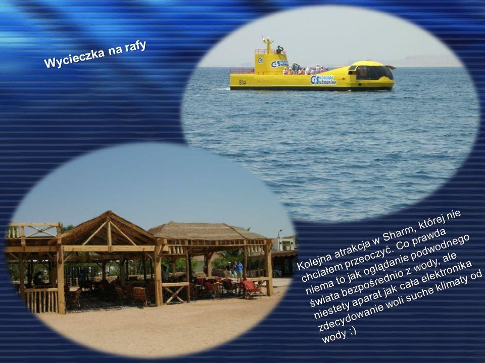 Wycieczka na rafy Kolejna atrakcja w Sharm, której nie chciałem przeoczyć. Co prawda niema to jak oglądanie podwodnego świata bezpośrednio z wody, ale