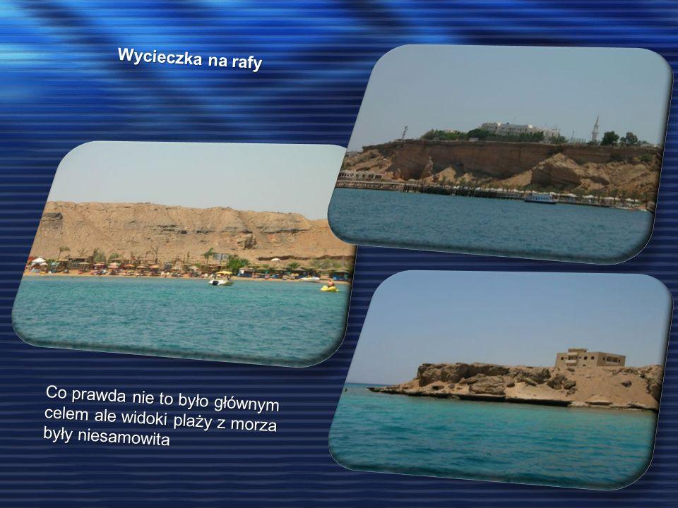 Wycieczka na rafy Co prawda nie to było głównym celem ale widoki plaży z morza były niesamowita