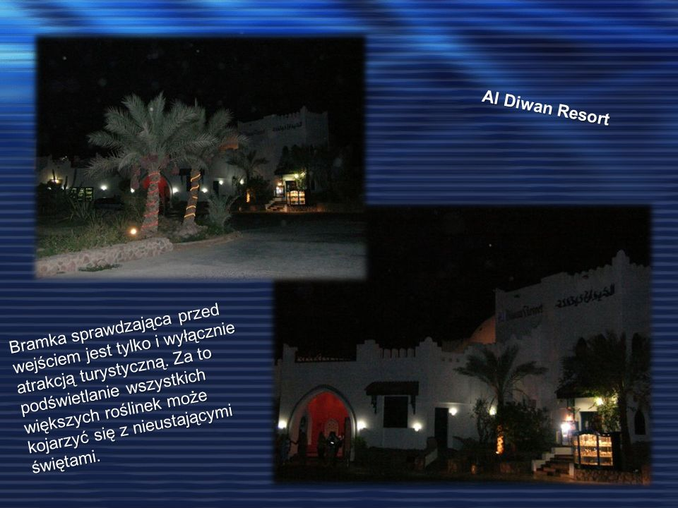 Al Diwan Resort Bramka sprawdzająca przed wejściem jest tylko i wyłącznie atrakcją turystyczną. Za to podświetlanie wszystkich większych roślinek może