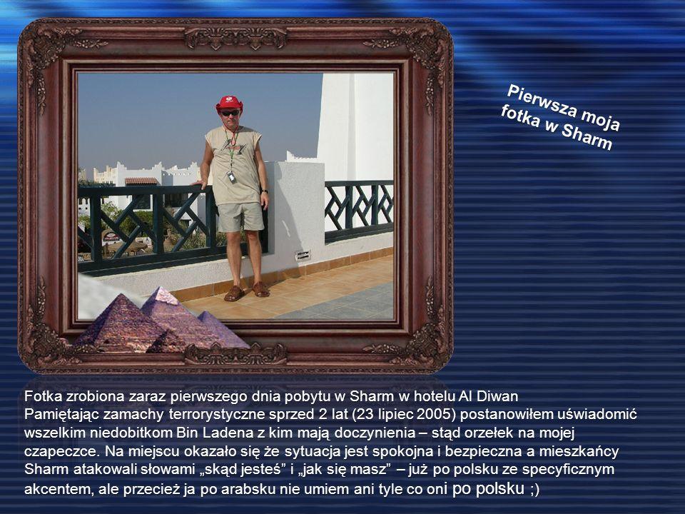 Pierwsza moja fotka w Sharm Fotka zrobiona zaraz pierwszego dnia pobytu w Sharm w hotelu Al Diwan Pamiętając zamachy terrorystyczne sprzed 2 lat (23 lipiec 2005) postanowiłem uświadomić wszelkim niedobitkom Bin Ladena z kim mają doczynienia – stąd orzełek na mojej czapeczce.