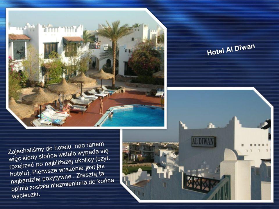 Hotel Al Diwan Zajechaliśmy do hotelu nad ranem więc kiedy słońce wstało wypada się rozejrzeć po najbliższej okolicy (czyt. hotelu). Pierwsze wrażenie