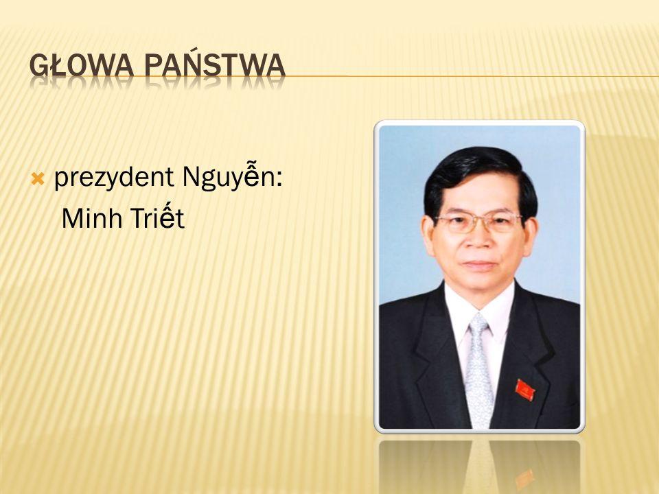 prezydent Nguy n: Minh Tri t