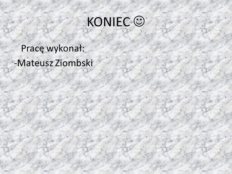 KONIEC Pracę wykonał: -Mateusz Ziombski